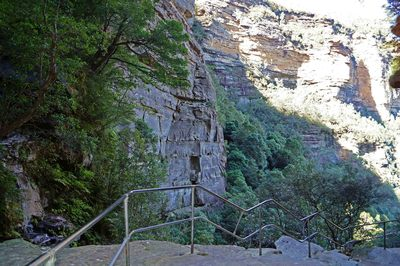 big steps walking tracks wentworth falls